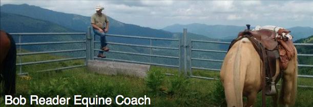 Bob reader equine coach